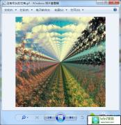 xp系统保存本地的gif图片不能动的解决技巧